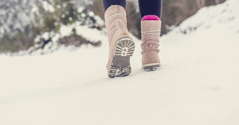 Kar Botları