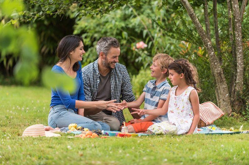 Aktiviteler Piknik