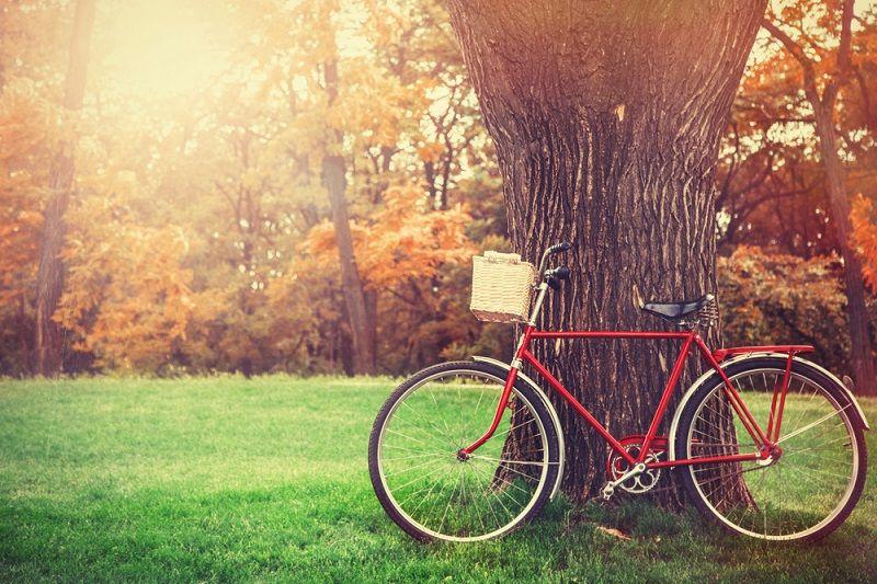 Bisiklet Aksesuarları Nelerdir?