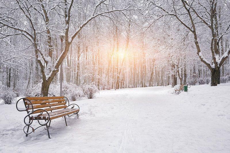 Kış Fotoğrafı Işık