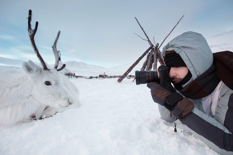 Kış Fotoğrafı Makro
