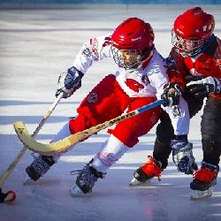 Kış Sporları Bandy