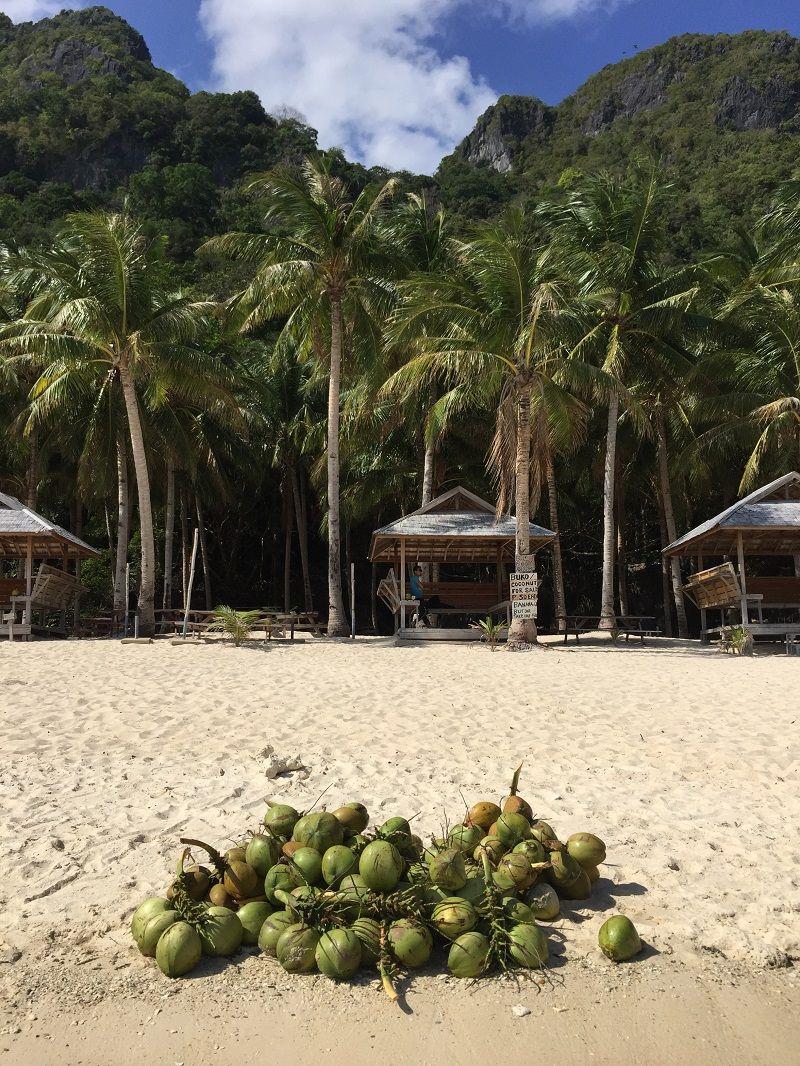 Palawan Adası Plaj
