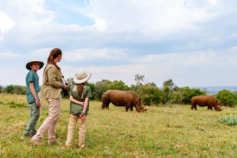 Safari Nedir Dikkat Edilecekler