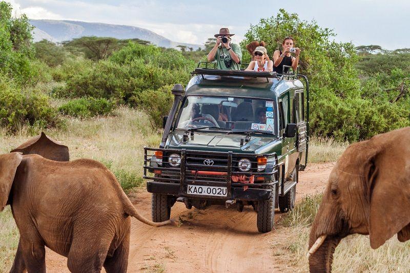 Safari Nedir Nasıl Yapılır