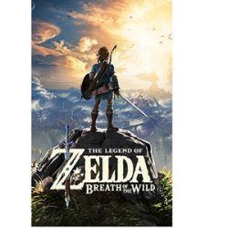 Wii Oyunları Zelda