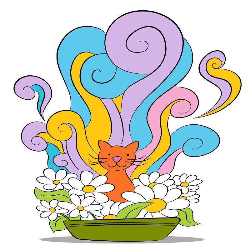 Yavru Kediler Kum Parfümü