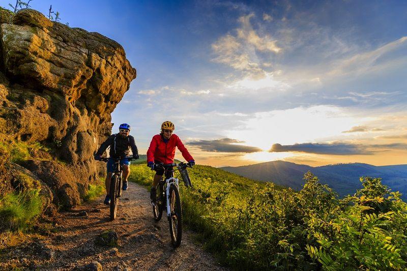 Dağ Bisikleti Modelleri