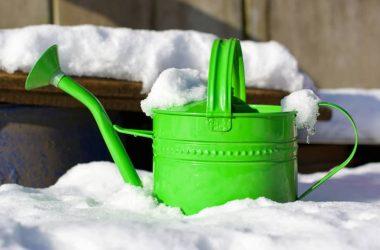 Bahçenizi Kışa Hazırlayın