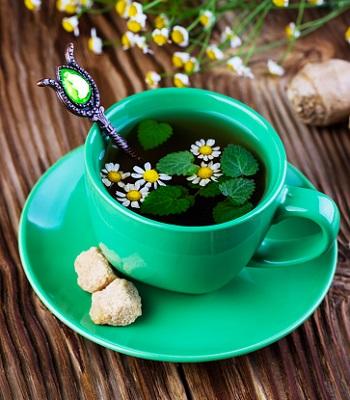 Bitki Çayları Faydaları