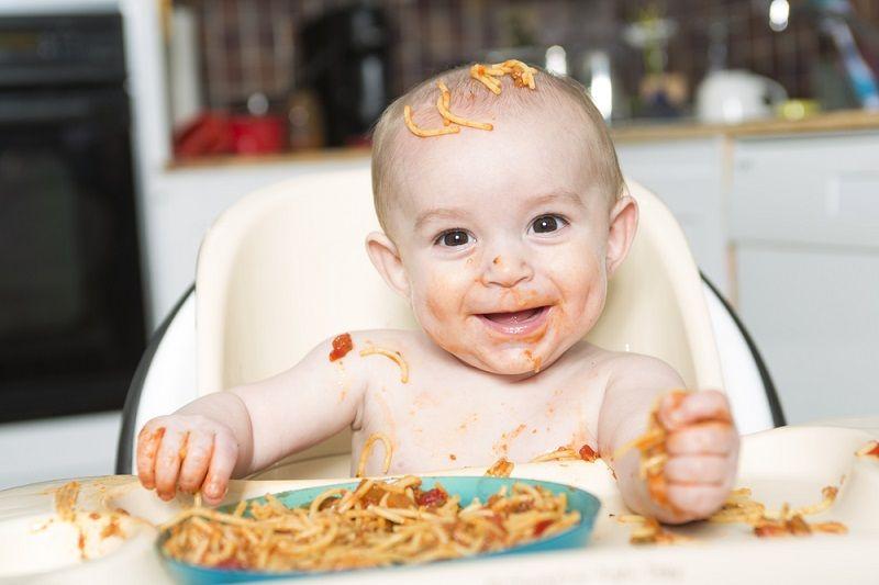 8 Aylık Bebek Beslenmesi Parmak Gıda