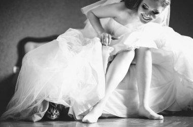 Düğün Rehberi