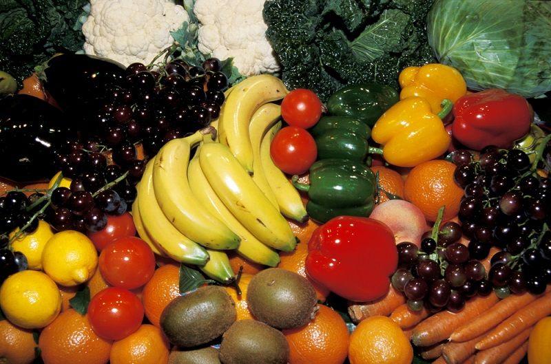 Teknoloji Haberleri Sentetik Yiyecekler