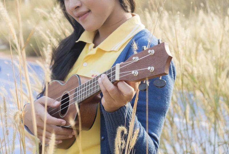 Müzik Türleri Halk Müzikleri