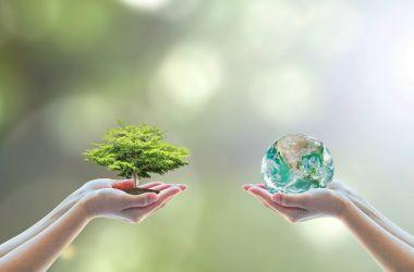 Dünya Çevre Koruma Günü