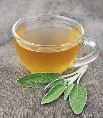 Bitki Çayları Adaçayı