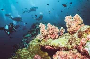 Koh Lanta Adası Tayland Gezilecek Yerler