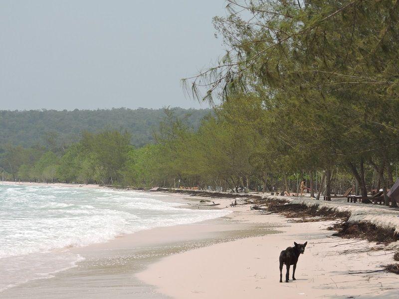 Kamboçya Koh Rong Nerede