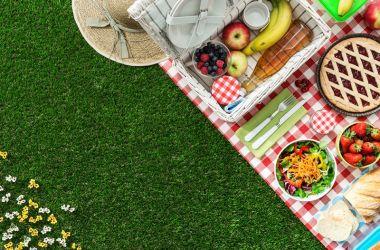Piknik Malzemeleri