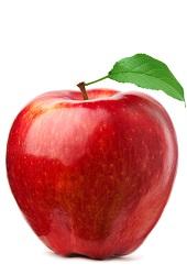 Sonbahar Meyveleri Sonabaharda Hangi Meyveler Olur Blog11