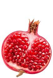 Sonbahar Meyveleri