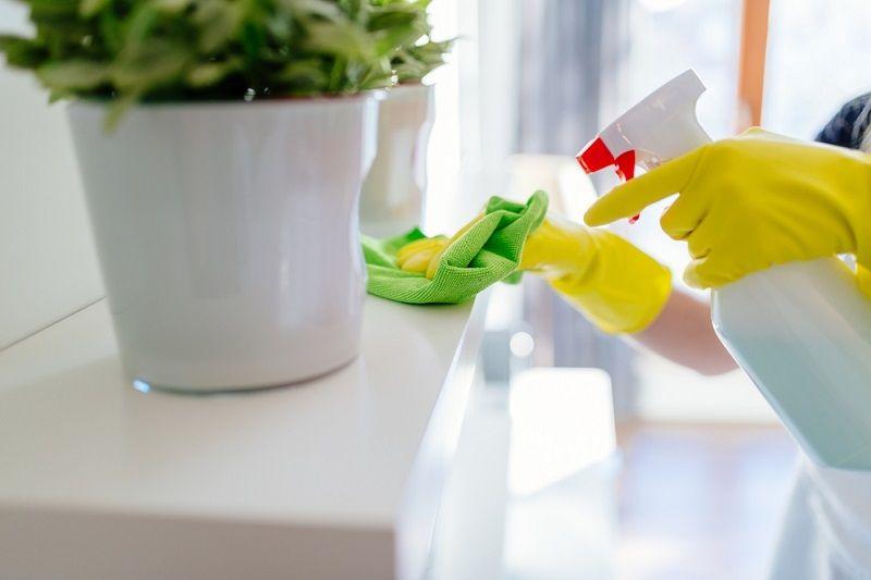 Ev Temizliği Nasıl Yapılır Toz Alma