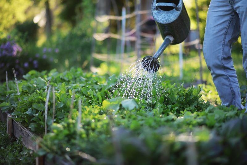 bahçe su tasarrufu