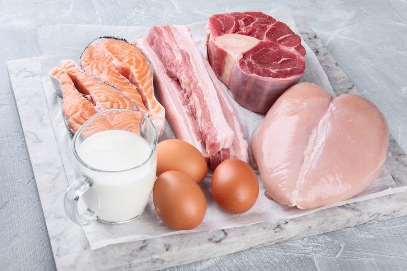 hayvansal gıda
