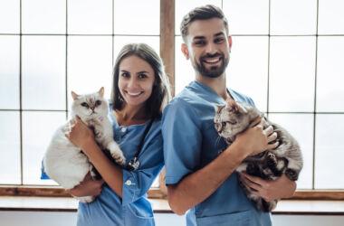 veteriner hekim