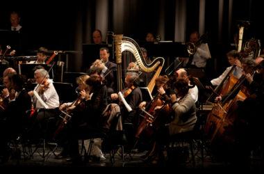 senfoni orkestrası