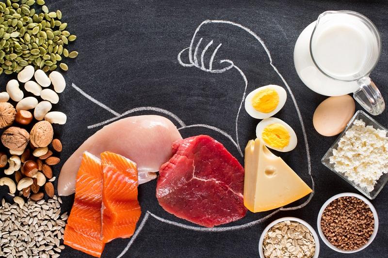 protein faydaları