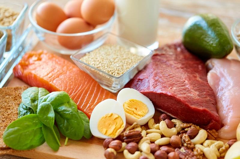 hayvansal protein içeren besinler